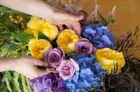 lule mjeksiaislame