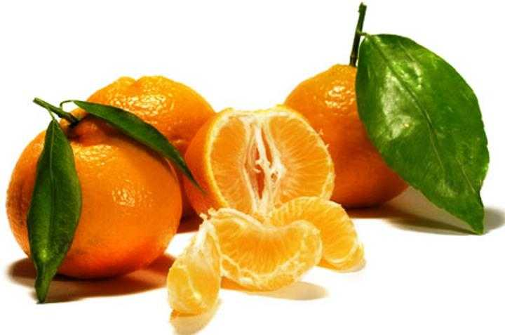 mandarina mjeksiaislame