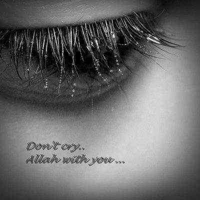 mos qaj