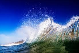 nature sea