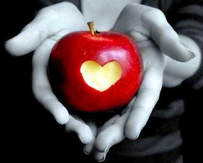12 menyrat per perfitimin e zemres