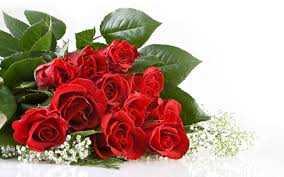 roses flo