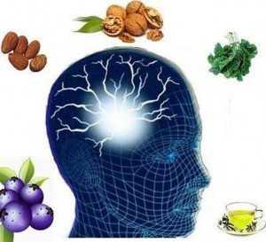 ushqime dhe memorie