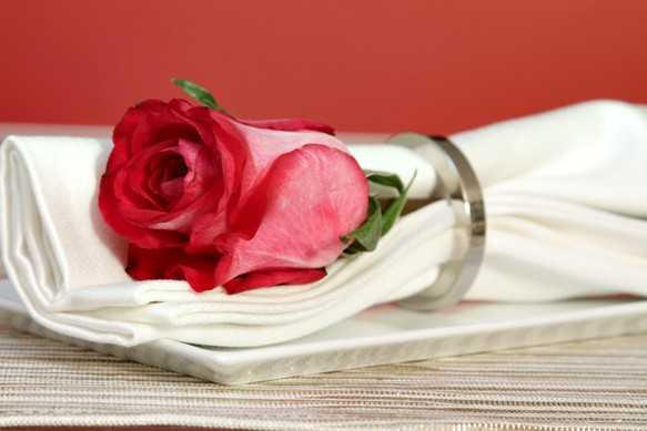 martesa marohesha