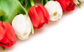 lulet