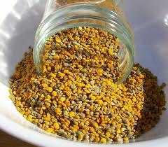 poleni poelni