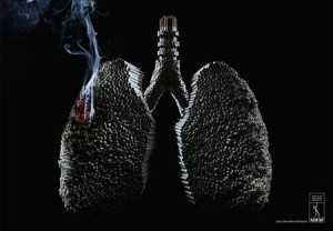 tymi i cigares