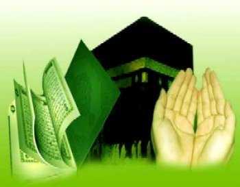 lutje