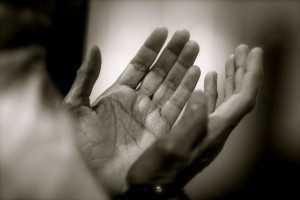 lutje dua
