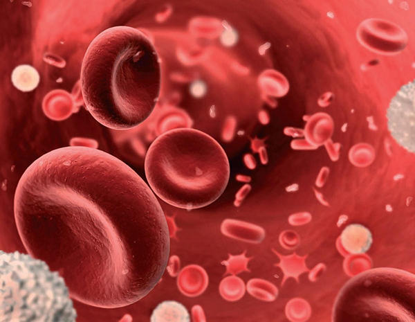 rinstinkt-blog-anemia-humbje-hematike-gjaku