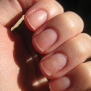 gishtat