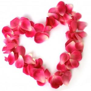 lule zemra