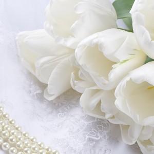 lule mbretereshe