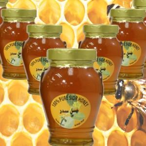 mjalt sidri