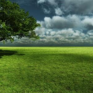 natyra medito