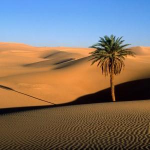shkretira