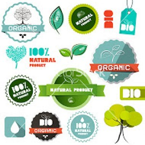 Bio Vector Organic Natural Product Flat Design Labels - Tags - Stickers Set Isolated on White Background
