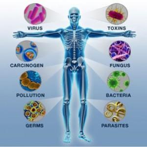 imuniteti