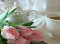Çaji i freskët