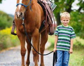 Pse fëmijët e fshatit rrallë vuajnë nga alergjitë?