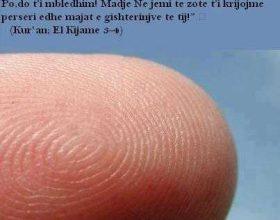 Shenjat e gishtërinjve