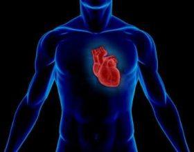 Kurani dhe Shkenca – Ataku i zemrës