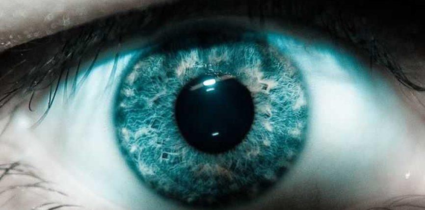 Ule shikimin
