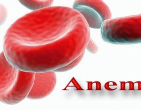 Çfarë duhet të konsumojnë anemikët? A e ke ditur?