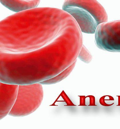 Recetë për shërimin e anemisë në mënyrë natyrale