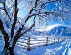 Bora dhe pastrimi nga gjynahet