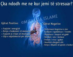 Cka ndodh me ne kur jemi te stresuar ?