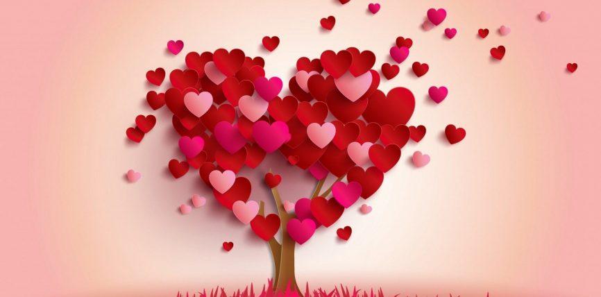 A është haram rënia në dashuri? (Porosi dashurie)