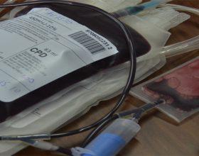 Dhurimi i gjakut dhe shëndeti i juaj