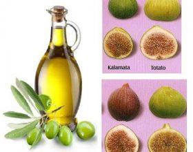 Fiku dhe ulliri,ushqim dhe ilac