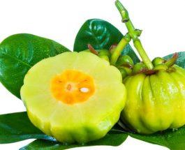 Pema çudibërëse që shkrin dhjamin dhe ngrit disponimin – Garcinia Cambogia
