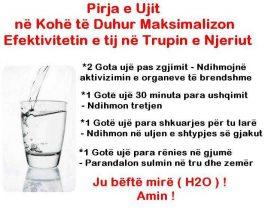 Pirja e ujit