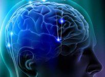 Si funksionon truri?
