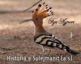 Vdekja e Sulejmanit a.s