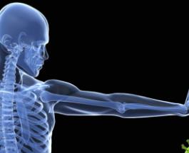 Agjërimi rigjeneron sistemin imunitar