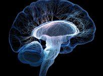 17 Lloje të dhembjeve së kokës