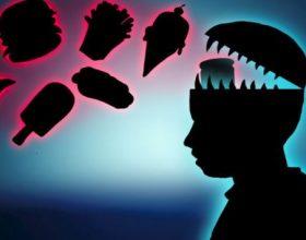Ushqimet me yndyrë zvogëlojnë kujtesën: Fakte interesante në lidhje me të ushqyerit