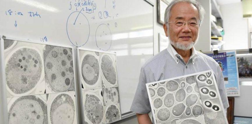 Fituesi i Nobelit, japonezi Joshinori Ohsumi tregon se si pastrohet trupi nga qelizat e panevojshme gjatë Ramazani