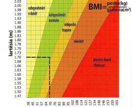 Indeksi i masës trupore