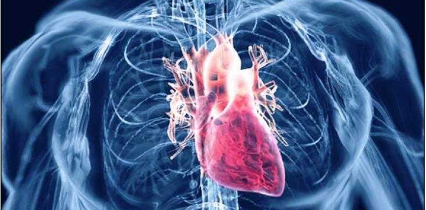 Dobitë e agjërimit në aspektin fiziko-trupor
