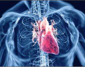 Agjerimi dhe sistemi kardiovaskular
