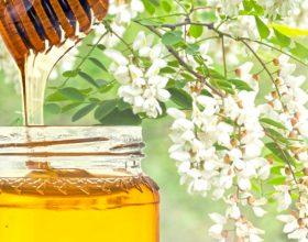 Mjaltë i pemes akacie