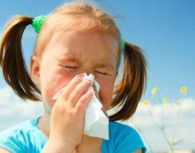Si te largojme alergjite stinore me metoda natyrale;