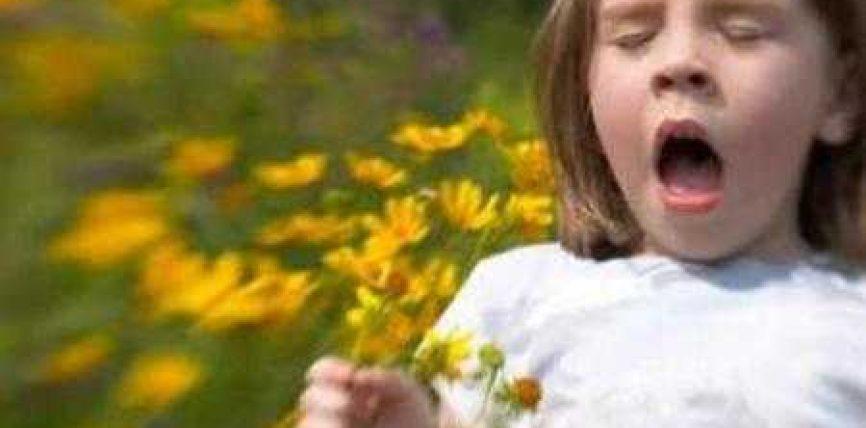 Alergjia, sëmundja sezonale, që nuk duhet neglizhuar