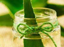 Vaj Aloe Vera (Aloe Vera Oil)