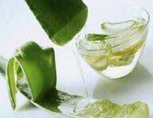 Dhjete perdorimet kuruese te Aloe Veres